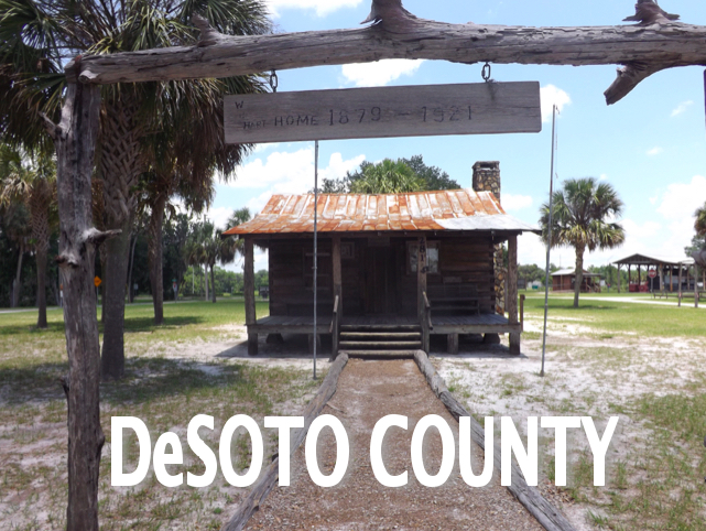 DeSOTO Caption