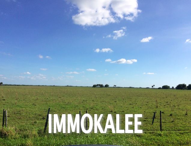 Immokalee Caption