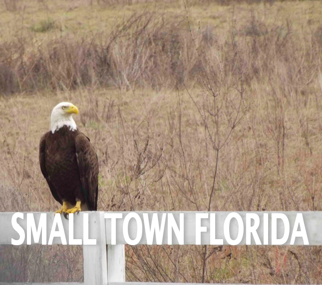 Small Town Caption